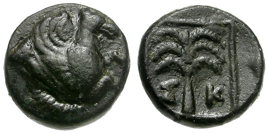 Ancient Coins - Troas. Skepsis Æ10 / Palm Tree