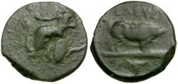 Ancient Coins - Attica. Eleusis Æ16 / Pig