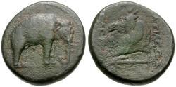 Ancient Coins - Seleukid Kings. Seleukos I Nikator (312-281 BC) Æ20 / Elephant