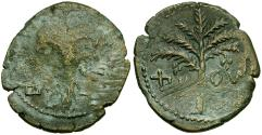 Ancient Coins - Judaea. Bar Kochba Revolt Middle Bronze Æ28