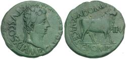 Ancient Coins - Augustus (27 BC-AD 14). Spain. Lepida Celsa Æ28 / Bull