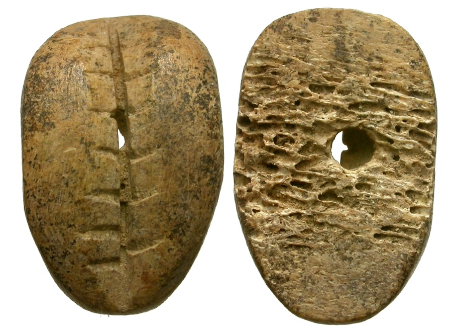 Ancient Coins - Chinese Bone Cowry Imitation