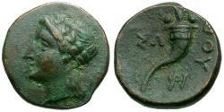 Ancient Coins - Lucania. Thurium Æ12 / Cornucopia