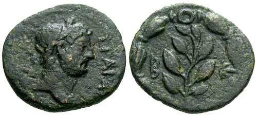 Ancient Coins - VF/VF Hadrian AE14 Cyrrhestica-Beroea / Laurel Branch