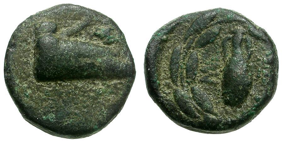 Ancient Coins - Ionia. Samos Æ8 / Amphora