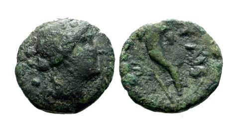 Ancient Coins - gF/gF Lucania Paestum AE17 / Dionysus / Cornucopia