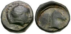 Ancient Coins - Thessaly. Pharsalos Æ11 / Horse's Head