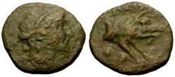 Ancient Coins - Lucania, Paestum Æ Sextans / Demeter / Boar