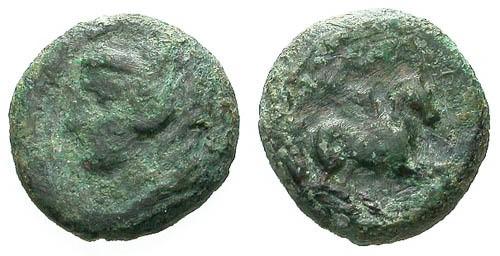 Ancient Coins - F/F Siculo-Punic AE13 / Herakles / Pegasus