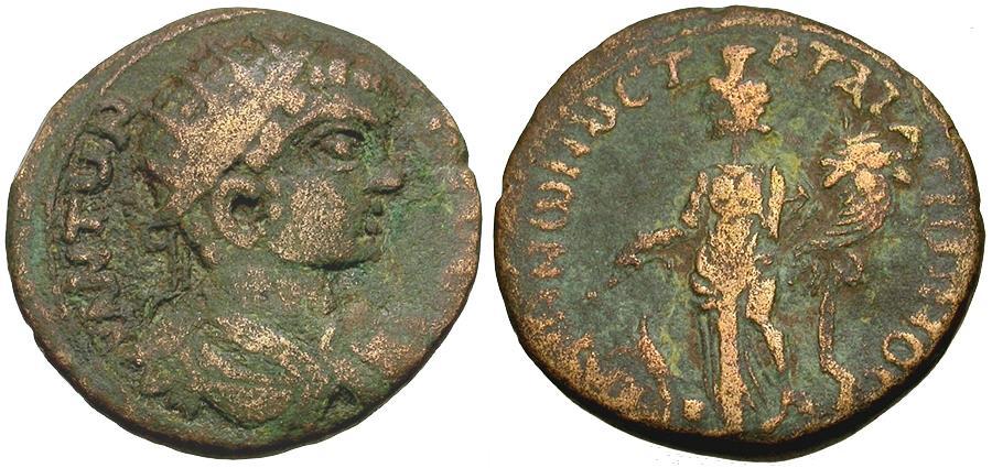 Ancient Coins - Caracalla (AD 198-217). Phrygia. Peltae. T Mar Tat Arionos, strategos Æ21 / Kybele