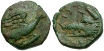 Ancient Coins - Crete. Lyttos Æ12 / Eagle & Boar