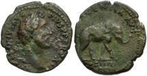 Ancient Coins - Antoninus Pius Æ AS / Elephant