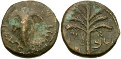 Ancient Coins - Judaea. Bar Kochba Revolt Æ25 / Vine Leaf & Palm Tree
