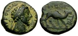 Ancient Coins - Commodus. Arabia. Bostra Æ14 / Camel