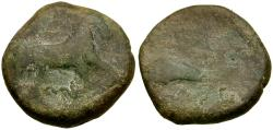 Ancient Coins - Apulia. Salapia Æ19 / Horse and Dolphin