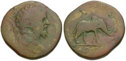 Ancient Coins - Septimius Severus (AD 193-211) Æ Sestertius / Elephant