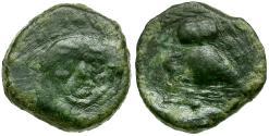 Ancient Coins - Sicily. Kamarina Æ Onkia / Owl