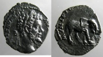 Ancient Coins - Semptimius Severus: Denarius, Elephant reverse