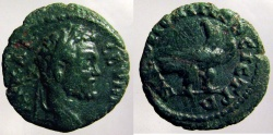 Ancient Coins - Septimius Severus: Moesia Inferior, Eagle standing right reverse