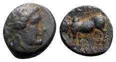 Ancient Coins - Seleukid Kings, Seleukos II Kallinikos (246-225 BC). Æ - Apollo / Bull