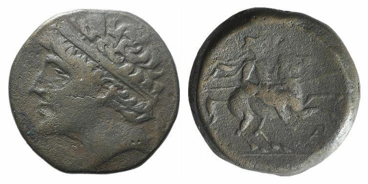 Ancient Coins - Sicily, Syracuse. Hieron II (274-216 BC). AE Hemilitron