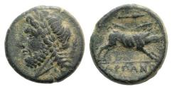 Ancient Coins - ITALY. Apulia, Arpi, 3rd century BC. Æ 20mm R/ BOAR
