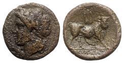 Ancient Coins - Northern Campania, Cales, c. 265-240 BC. Æ - Apollo / Bull