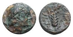 Ancient Coins - Southern Lucania, Metapontion, c. 300-250 BC. Æ
