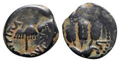 Ancient Coins - Agrippa I (37-43 CE). Judaea, Herodian Kings. Æ Prutah