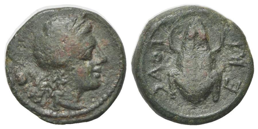 Ancient Coins - ITALY. Northern Apulia, Luceria, c. 211-200 BC. Æ Uncia. R/ FROG