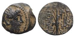 Ancient Coins - Seleukid Kings, Antiochos IX (114/3-95 BC). Æ