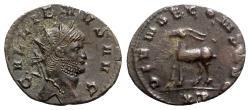 Ancient Coins - Gallienus (253-268). Antoninianus - Rome - R/ Stag