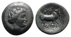 Ancient Coins - Euboia, Histiaia, c. 4th-3rd century BC. Æ