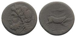 Ancient Coins - ITALY. Northern Apulia, Arpi, 3rd century BC. Æ 21mm. R/ BOAR