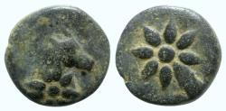 Ancient Coins - Pontos, Uncertain, c. 130-100 BC. Æ - Horse head / Comet