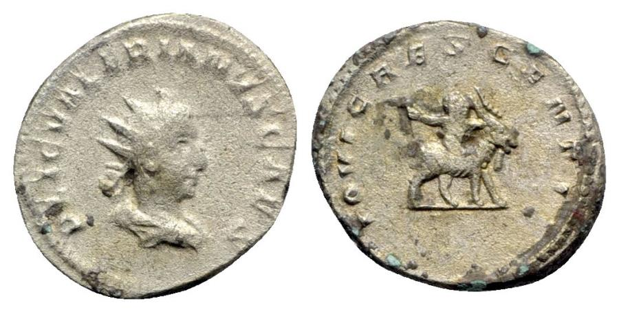 Ancient Coins - Valerian II (Caesar, 256-258). AR Antoninianus - Colonia Agrippinensis - R/ Young Jupiter riding goat