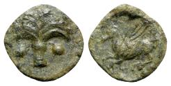 Ancient Coins - Sicily, Carthaginian Domain, c. 330-320 BC. Æ - Palm tree / Pegasos