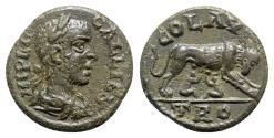 Ancient Coins - Gallienus (253-268). Troas, Alexandria. Æ - R/ She-wolf