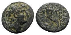 Ancient Coins - Seleukid Kings, Antiochos VIII (121/0-97/6 BC). Æ - R/ Filleted double cornucopia