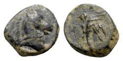 Ancient Coins - Pontos, Uncertain, c. 130-100 BC. Æ - Horse head / Palm frond
