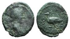 Ancient Coins - Anonymous issues, temp. Domitian to Antoninus Pius, 81-161. Æ Quadrans. Rome. . R/ DOVE