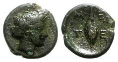 Ancient Coins - Southern Lucania, Metapontion, c. 320-300 BC. Æ