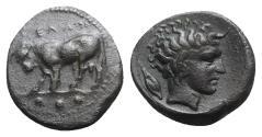 Ancient Coins - Sicily, Gela, c. 420-405 BC. Æ Tetras