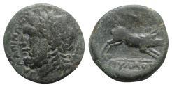 Ancient Coins - Northern Apulia, Salapia, c. 225-210 BC. Æ - Zeus / Boar - Poullos