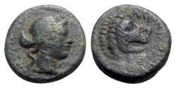 Ancient Coins - Troas, Antandros, c. 4th-3rd centuries BC. Æ - Apollo / Lion head