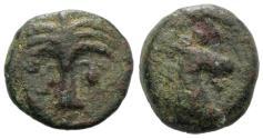 Ancient Coins - Sicily, Carthaginian Domain, c. 4th-3rd century BC. Æ 19mm. Palm tree R/ Horse's head