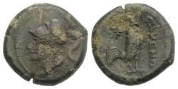 Ancient Coins - ITALY. CAMPANIA, Cales. Circa 265-240 BC. Æ 20mm R/ COCK