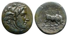 Ancient Coins - Seleukid Kings, Seleukos I (312-281 BC). Æ - Antioch - R/ Bull
