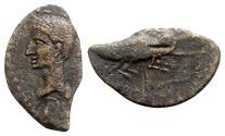 Ancient Coins - Augustus and Agrippa (27 BC-14 AD). Æ As - Gaul, Nemausus - R/ Crocodile