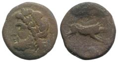 Ancient Coins - ITALY. Northern Apulia, Arpi, 3rd century BC. Æ 21mm R/ BOAR